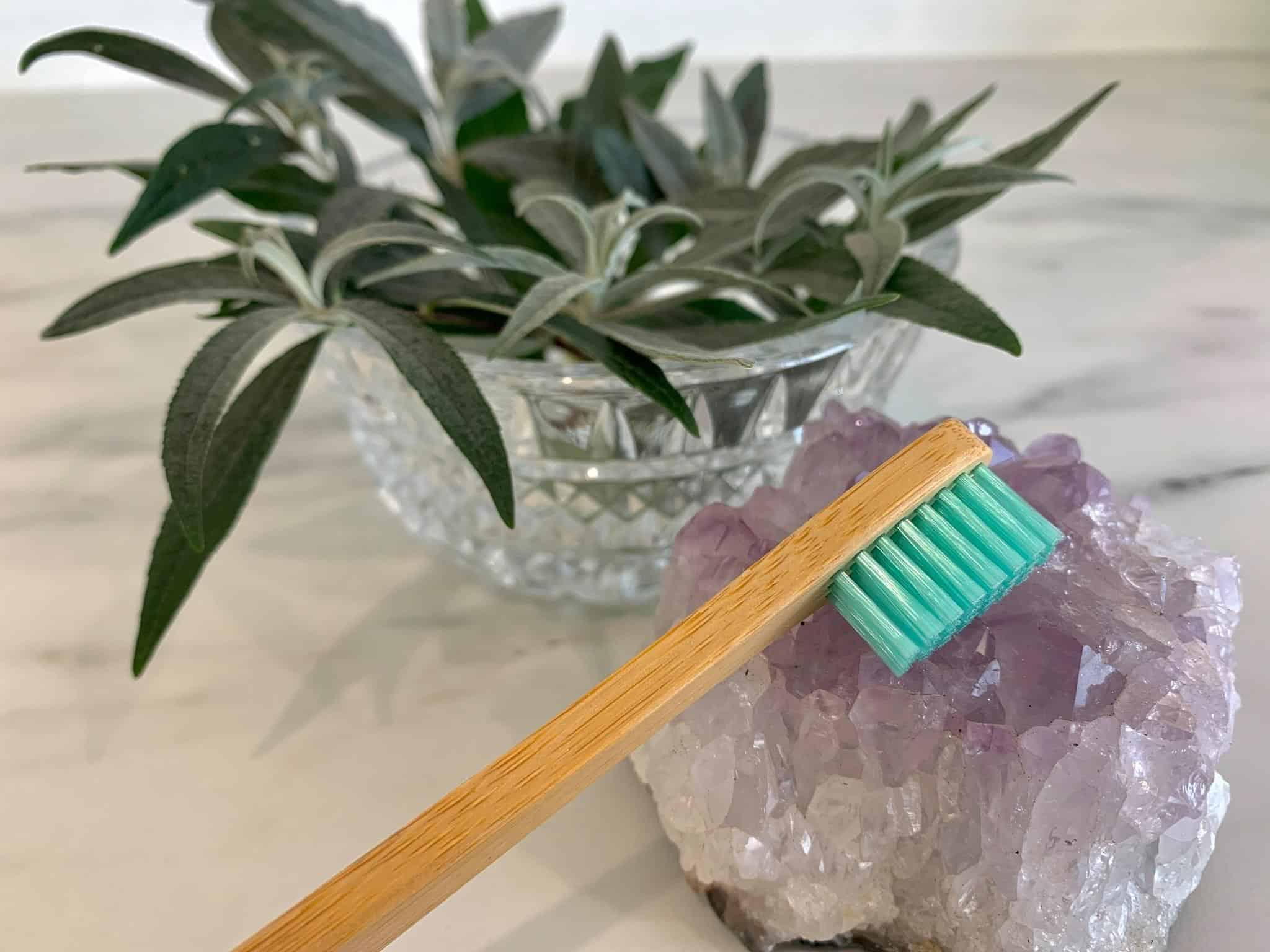 toothbrush and flowers